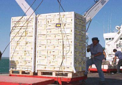 Secuestraron en Portugal 1.200 kilos de cocaína provenientes de Argentina