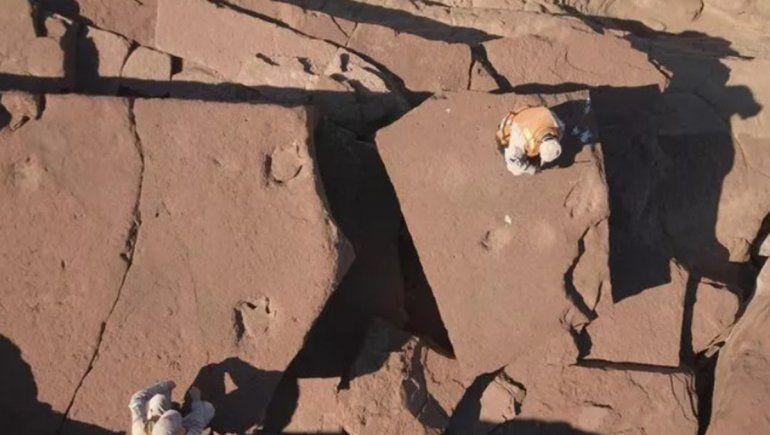 Increíble hallazgo: Prefectura encontró huellas de dinosaurio en Río Negro
