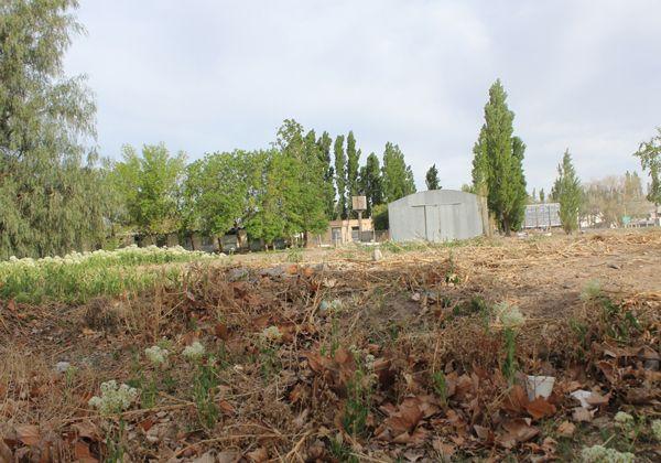 El Municipio cedió terreno para construir la sede de la Secretaría de Hidrocarburos