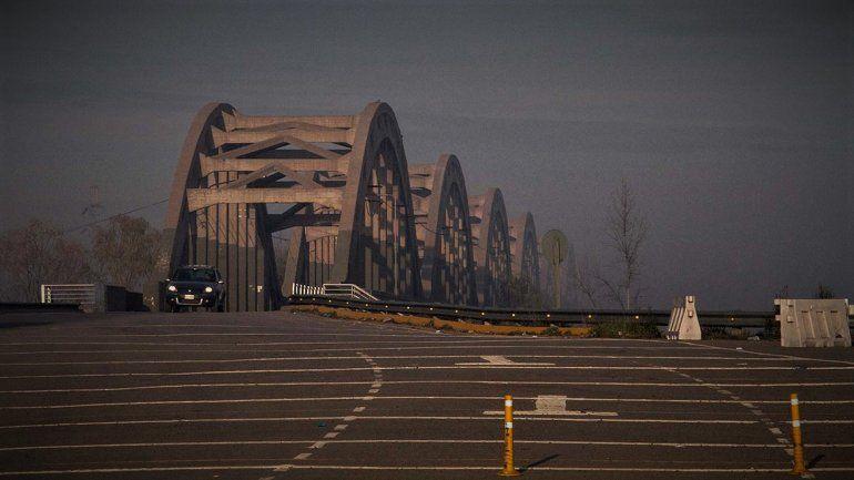 Sorpresa: dos cisnes interrumpieron el tráfico sobre los puentes carreteros